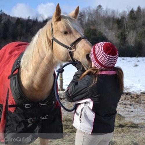 Pet Care Provider Allison Peck's Profile Picture