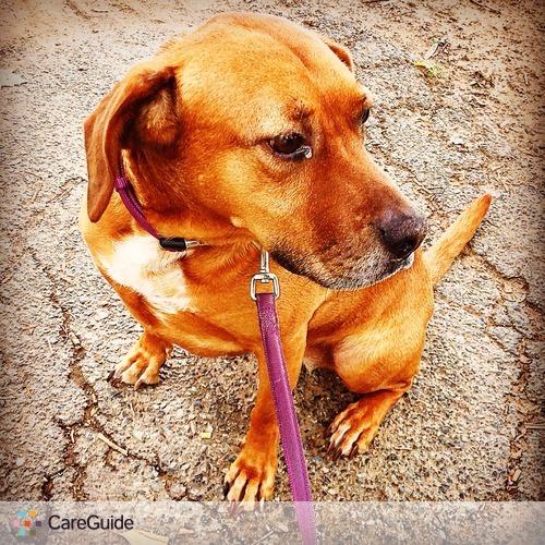 Pet Care Provider Hetty Crist's Profile Picture