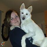 Dog Walker, Pet Sitter in Raleigh