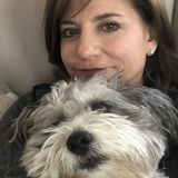 Concord, New Hampshire Dog Trainer Posting