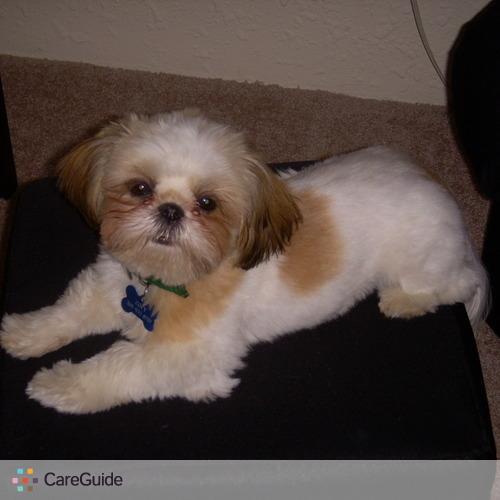 Pet Care Job Jen S's Profile Picture