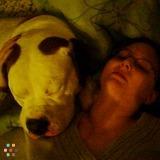 Dog Walker, Pet Sitter in Browns Mills