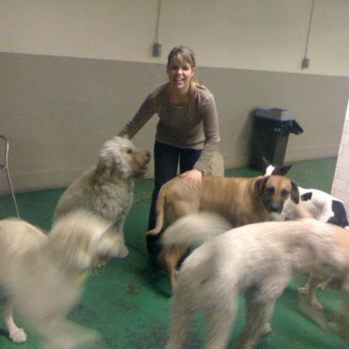 Pet Care Provider Cassie G Gallery Image 2