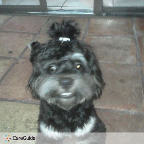 Pet Care Provider Mairet Murias's Profile Picture