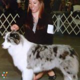 Dog Walker, Pet Sitter in Choctaw