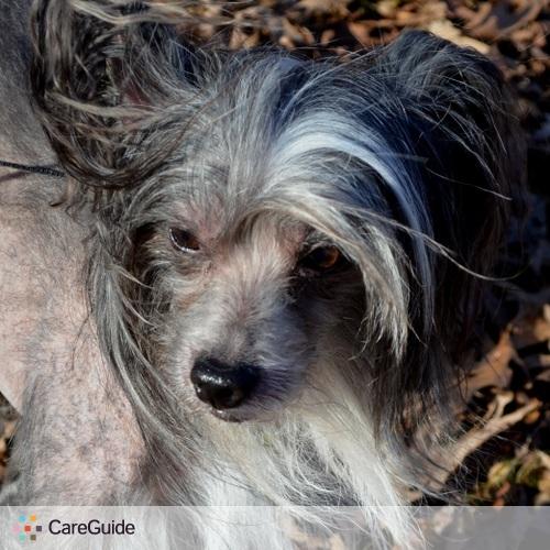 Pet Care Provider Broad Run P's Profile Picture