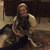 Interested In a Pet Sitter Opportunity in Paragould