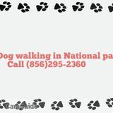 2016 National park dog walking and pet care