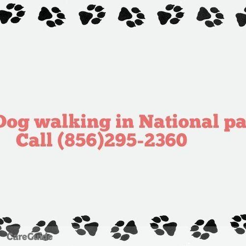 Pet Care Provider Jennifer Stanton's Profile Picture