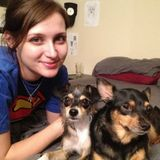 Full-time animal lover and vegan looking for pet care opportunities!