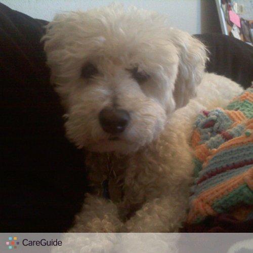 Pet Care Job Karen H's Profile Picture