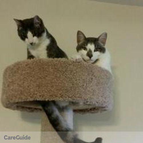 Pet Care Job Carolyn McClellan's Profile Picture