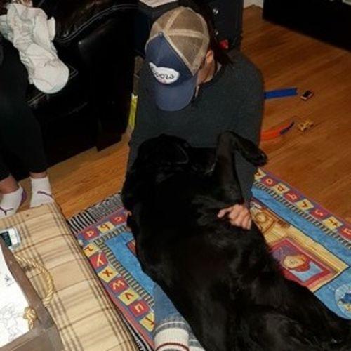 Pet Care Provider Jessica R Gallery Image 3