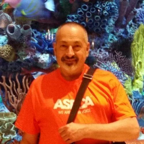 Elder Care Provider Dominic M's Profile Picture