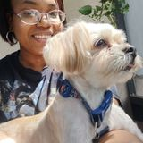 House and Loving Pet Sitter!