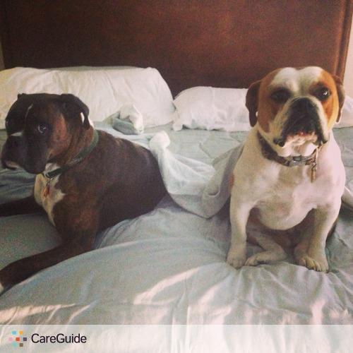 Pet Care Provider Nikki Jenis's Profile Picture