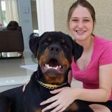Pet sitter willing to spoil and take care of your pets!