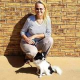 Pet sitter, dog trainer available