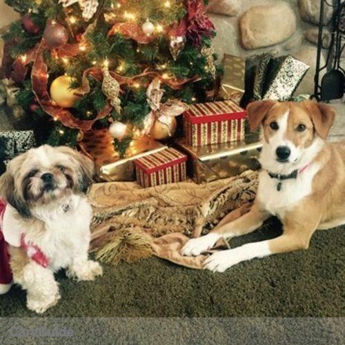 Pet Care Provider Rebecca B's Profile Picture