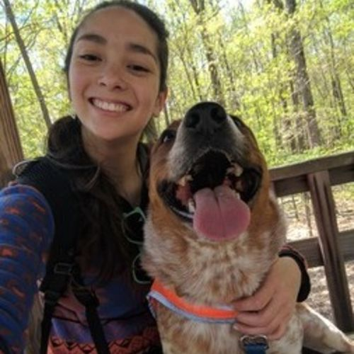 Hi! I'm Sam  I am an experienced dog walker, dog sitter