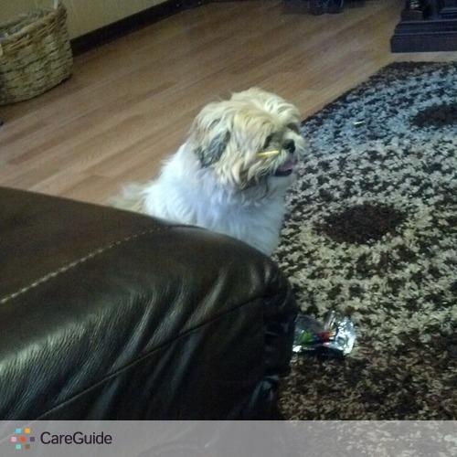 Pet Care Provider Jaylan Miller's Profile Picture