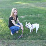 Dog Walker, Pet Sitter in Lake Forest