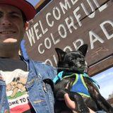 Lifelong Dog Walker and trainer in San Francisco, California