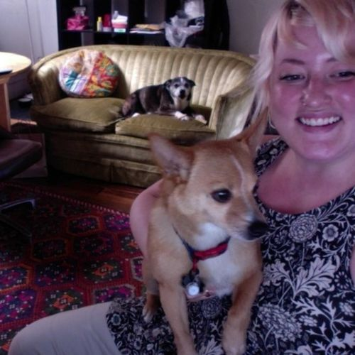 Pet Care Provider Claire W Gallery Image 1