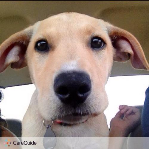 Pet Care Provider Gabriella M's Profile Picture