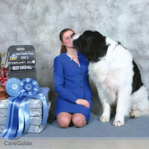Pet Care Provider Emma Gheseger's Profile Picture