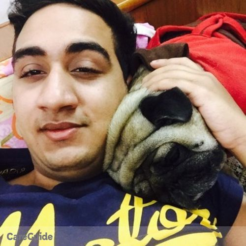 Pet Care Provider Ronil Arora's Profile Picture
