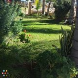 Landscaper Job in Corona