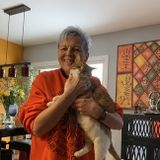 retired, just moved to Hemet, have 2 cats and have had dogs and cats all my life.