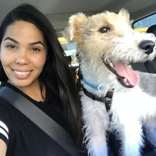 Pet Care Provider Jessica G's Profile Picture