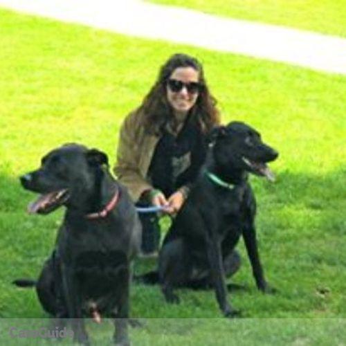 Pet Care Provider Katey Krupka's Profile Picture