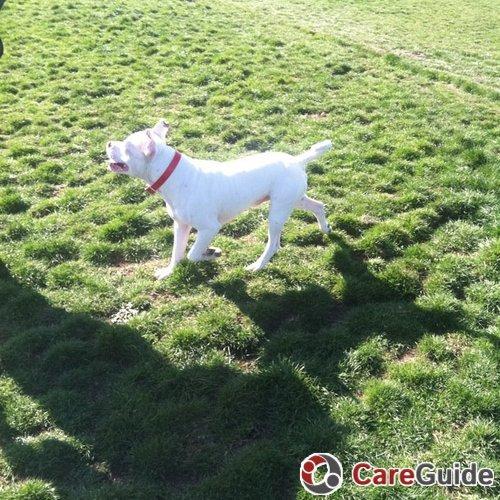 Pet Care Job Jennifer Weller's Profile Picture