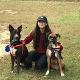 Great pet sitter available!