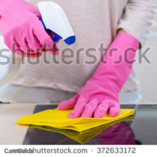 Housekeeper Provider Polished2 Perfection's Profile Picture