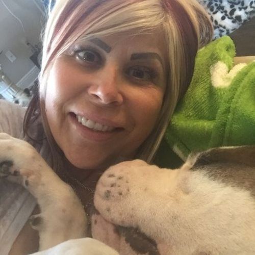 Pet Care Provider Tiffany Stoltz's Profile Picture