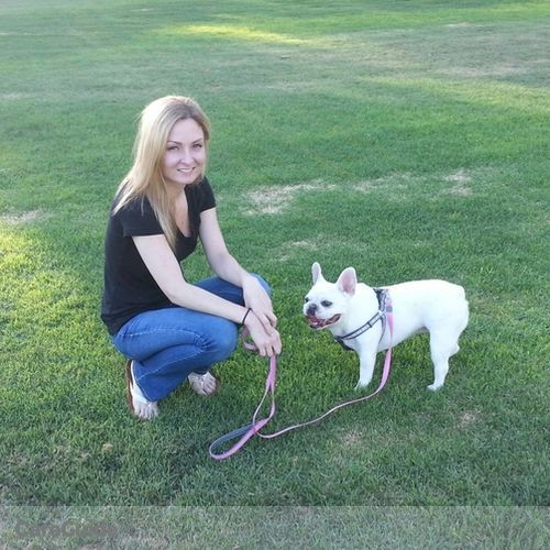 Pet Care Provider Natalie Clark's Profile Picture