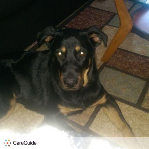 Pet Care Job Matthew Gleason's Profile Picture