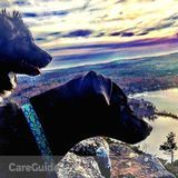 Dog Walker, Pet Sitter in Unity