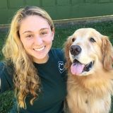 Tuscaloosa Animal Caregiver Interested In Job Opportunities