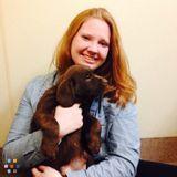 Dog Walker, Pet Sitter in Southington
