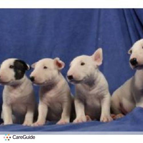 Pet Care Provider Eva Gougeon's Profile Picture