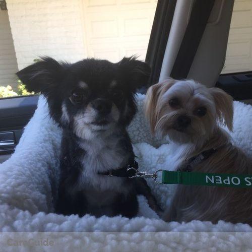Pet Care Provider Kathleen Kolar's Profile Picture