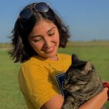 Interested In a Cat Sitter Job in Waxahachie, Texas