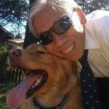 Experienced pet-sitter/dog walker