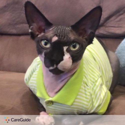 Pet Care Provider Cole's Critter S's Profile Picture