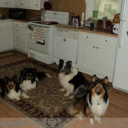 Pet Care Provider Christie C's Profile Picture